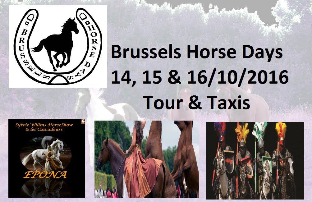 Du 14 au 16 octobre - Brussels Horse Days